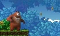 Aventura de Urso