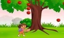 Colheita da Dora