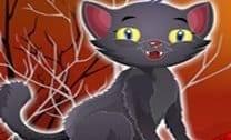 Cuidando do Animal de Estimação de Halloween