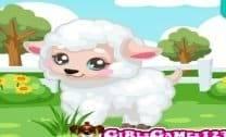 Cuidando da ovelha