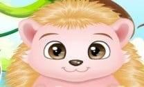 Cuidar do Bebê Porco Espinho