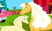 Cuidar dos Cavalos da barbie