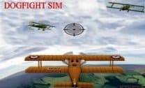 Dogfight SIM
