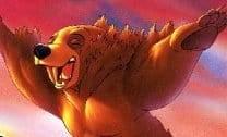 Erros do Urso