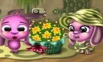 Flores da Doli
