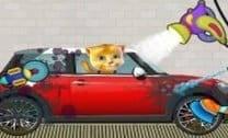 Ginger Lavando Carros