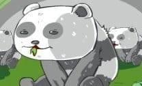 Panda nas alturas