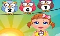 Pássaros da Seven