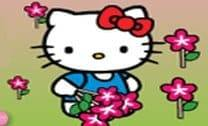 Passear com Hello Kitty