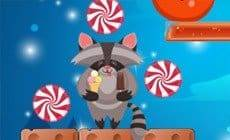 Raccoon Sweet Rush