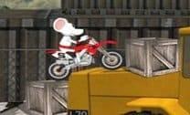 Rato Motoqueiro