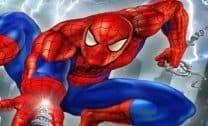 Teia do Homem Aranha
